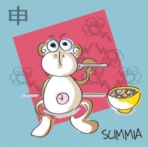 scimmia - zuppa di shitake
